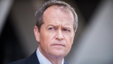 Shorten challenges Abbott on data retention