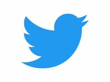 Twitter bird flies high with sort-of new logo