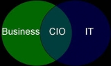 The emergence of the high performing CIO
