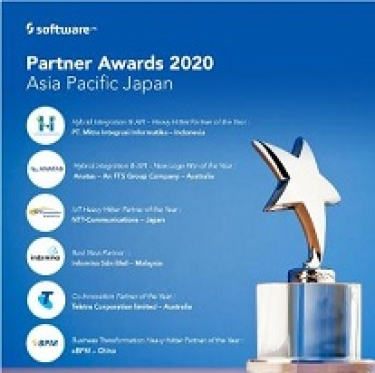 ANATAS named as a winner in Software AG Partner Awards