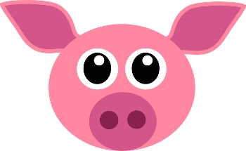 NBN Co plan to use DLM likened to 'putting lipstick on a pig'