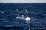 Safety swimmer at work on the Inmarsat/Nekton ocean research project