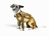 A space-suit - the ultimate steam-punk gift for your dog