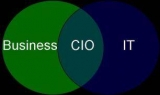 Growing shift from traditional IT role to 'strategic' business partner for CIOs